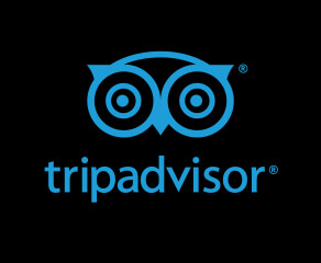 Toronto Bicycle Tours TripAdvisor